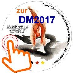 DM17_3-01-01